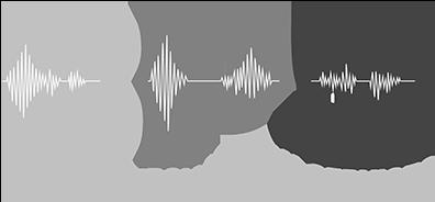 BPS of Texas logo